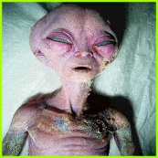 real alien pic